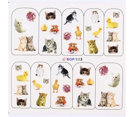 Waterdecal Animal BOP113
